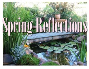 spring reflection graphic